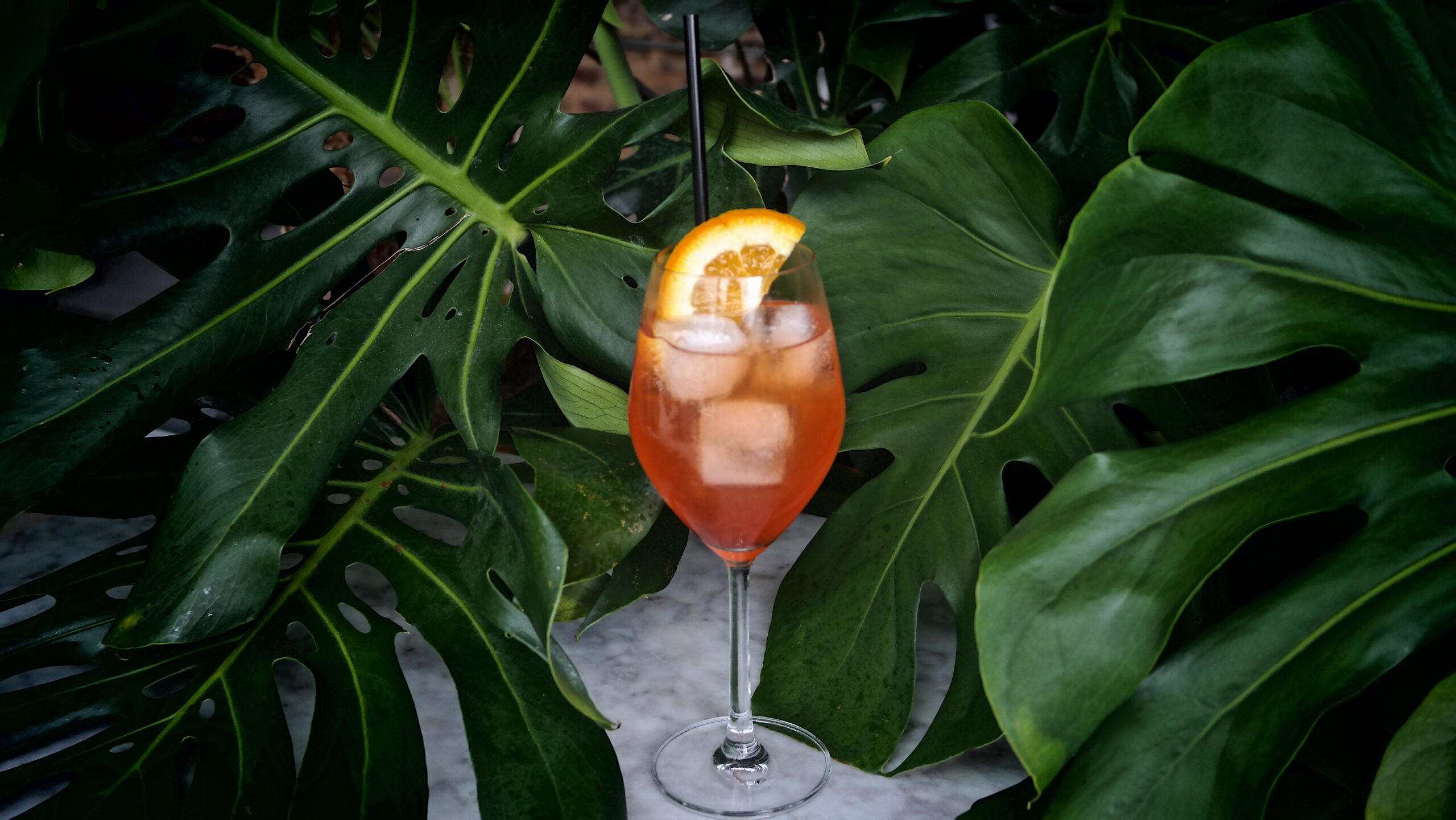 Mulino Italian Kitchen and Bar Fall 2020 Cocktails Mulino Spritz