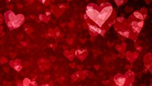 Valentines Day at Mulino